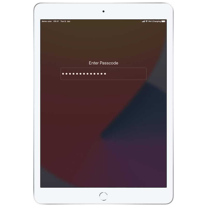 Insight Relution with apple shared iPad